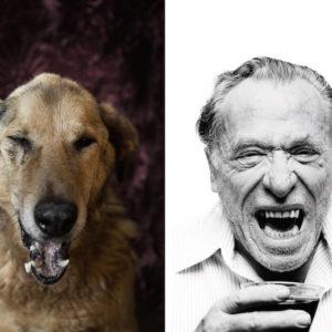 Wall Street - Charles Bukowski