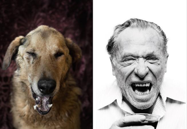 Charles Bukowski - Dan Bannino