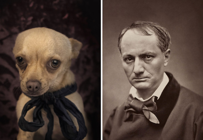 Charles Pierre Baudelaire - Poetic Dogs