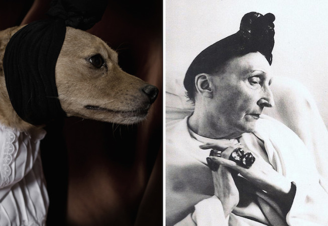 Edith Sitwell - Poetic Dogs
