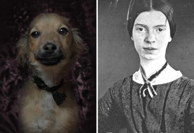 Emily Dickinson - Poetic Dogs