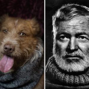 Leone - Hemingway