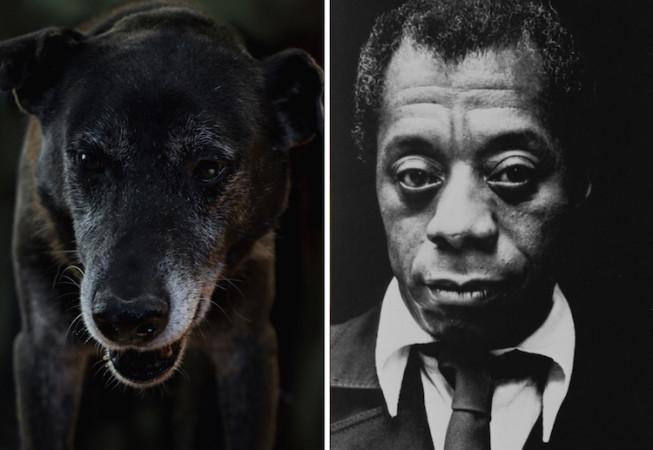 James Baldwin - Poetic Dogs