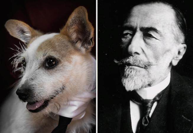 Joseph Conrad - Poetic Dogs