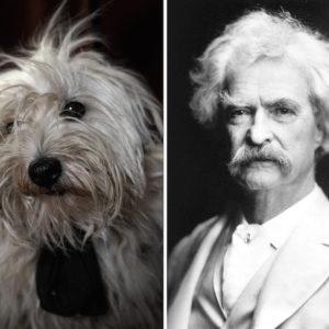 Nespola - Mark Twain
