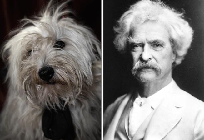 Mark Twain - Dan Bannino