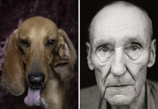 William S Burroughs -  Poetic Dogs